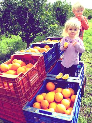 Sunay & Iyla eating Organic Dried Fruit